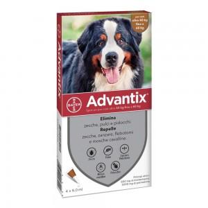 ADVANTIX SPOT ON*4PIP 40-60KG